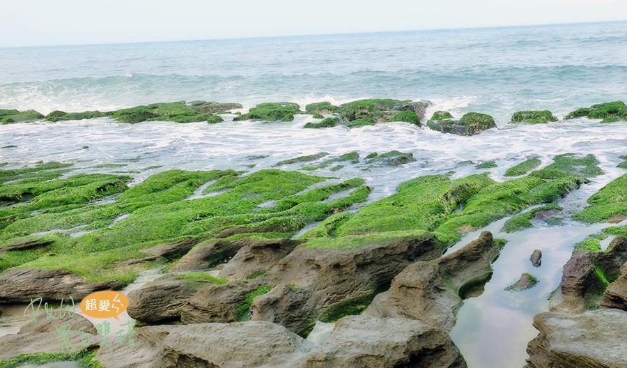 北海岸老梅綠石槽提早綠了!季節限定搭著綠色的奇景,來拍屬於自己的浪花照吧!